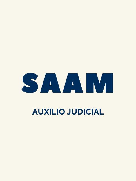 test auxilio judicial