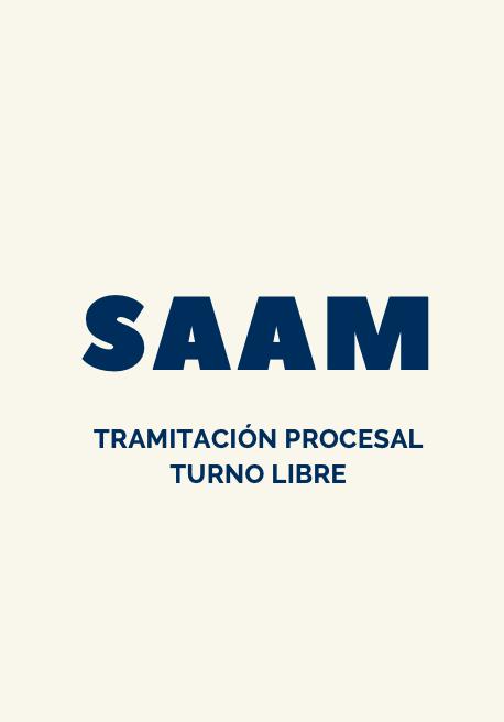 test online tramitación procesal